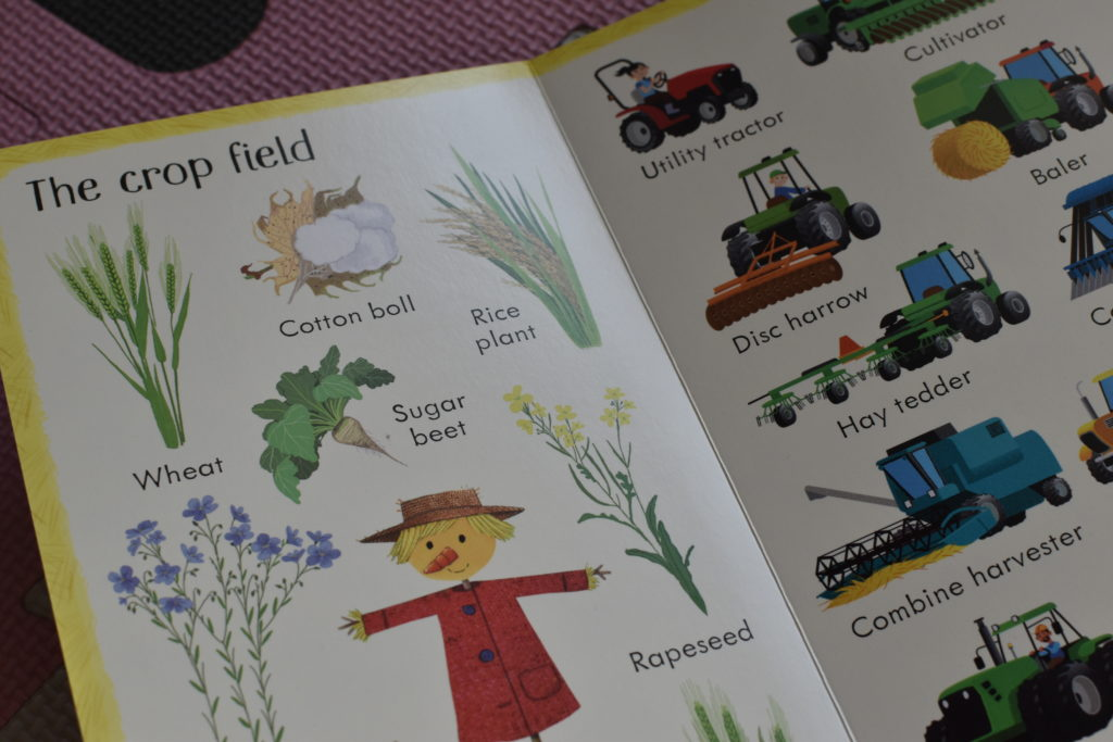 199 things on the farm Usborne